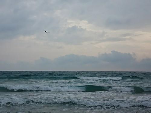 Surf forecast Playa de Entremares