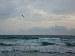 Playa de Entremares photo