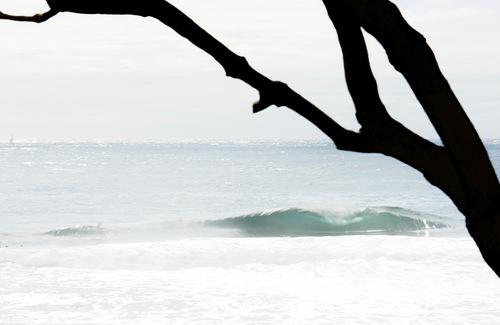 Lonely Peaks, Shark Island (Cronulla)