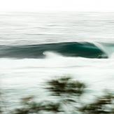Racing, Shark Island (Cronulla)
