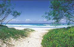 Pottsville Beach photo