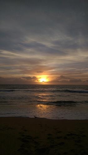 Good morning Stockton. Miss u Meags, Stockton Beach