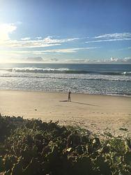 Praia do Meio photo