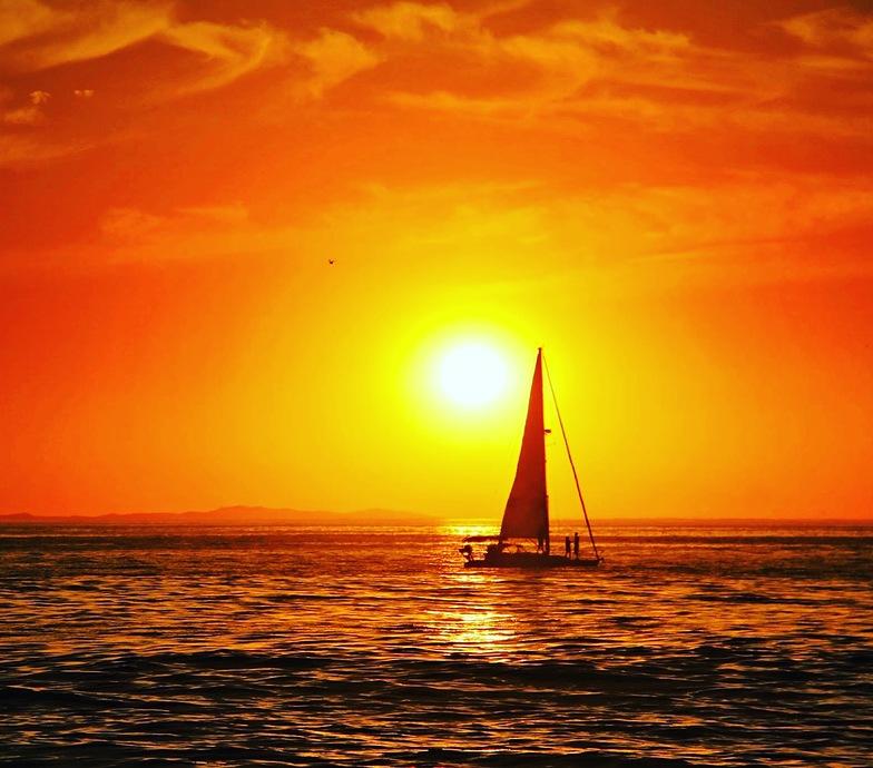 Sail the Horizon, Laguna Beach