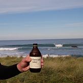 Forecast Cider at Shipwreck, Tora-Shipwreck