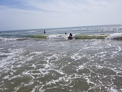 Surf's Up!, South Padre Island photo