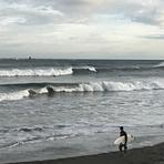 On a really good (pre-typhoon) day, Chigasaki Jetty