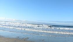 Horseneck Beach, Westport MA photo