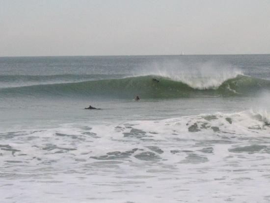 Rexham surf break