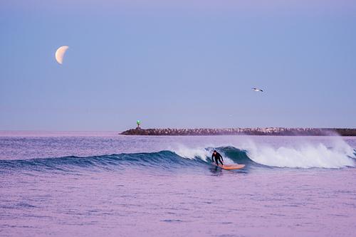 Surfing Under a Lunar Eclipse, Oceanside Harbor