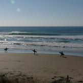 Chalet, Wainui Beach - Pines