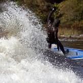 Lookin' down the wave, Jordan River