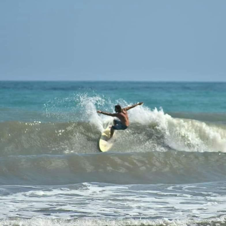 Surf.Palomino