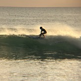 Sunset, Burros