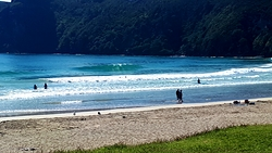 Beautiful morning, Taupo Bay photo