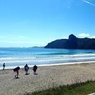 Beautiful summer day, Taupo Bay
