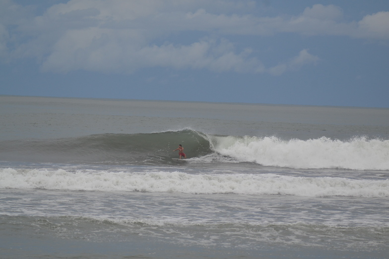 The Tree surf break