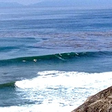 TC's reef break San Pedro, CA, TCs