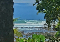 Un dia de agosto en Osa, Cabo Matapalo photo