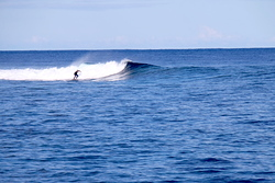 Small waves, Skateparks photo