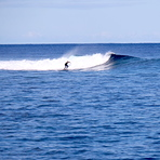 Small waves, Skateparks