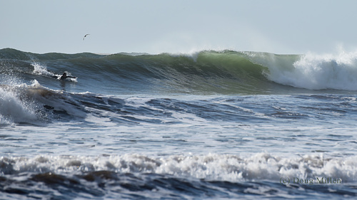 Big waves at the beach today, Good Harbor Beach