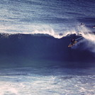 slotted through the backdoor, Castle Cove