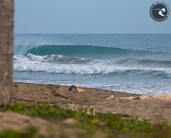 Mañanero Lefts photo