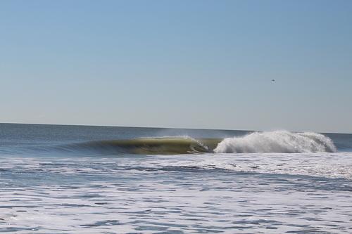 Clean w/ offshore winds, Pelican Watch