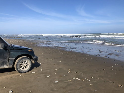 South end of Herbertville beach