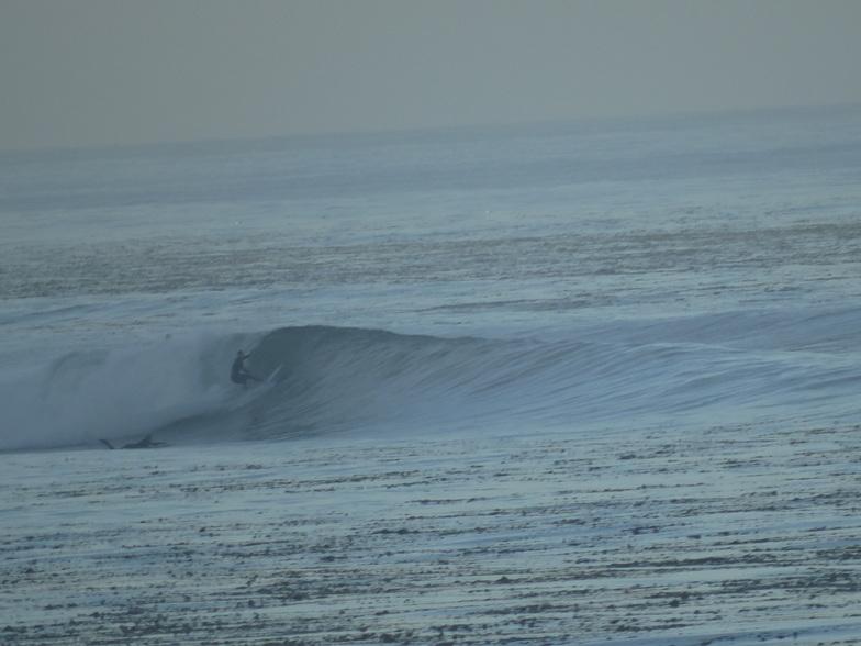 Indicator Surf
