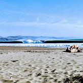 Log Dog, Doran Beach