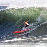 Cyclone Eusi hits the Bower, Fairy Bower