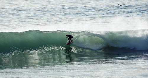Glassy day at Home, with Safi Surf Camp, Safi Garden (Le Jardin)