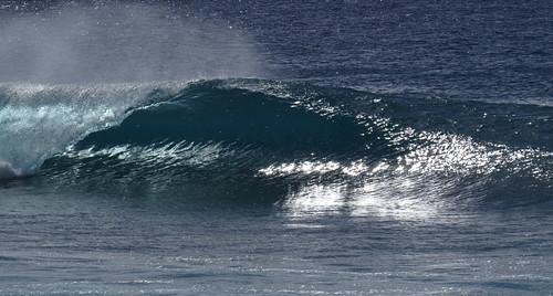 Avana left
