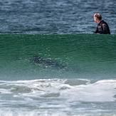 friendly locals at surf bay