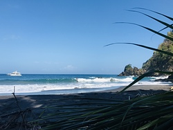 Secluded Snake Grass Cove, Anse Couleuvre photo