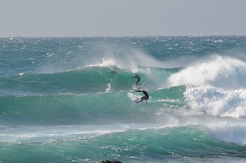 Winter swell, Cowries