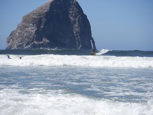 The ocean provides, Pacific City/Cape Kiwanda