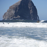 The ocean provides, Pacific City/Cape Kiwanda