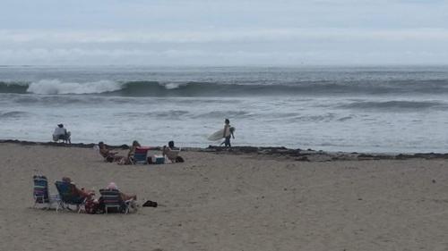 Horseneck Beach Surfer