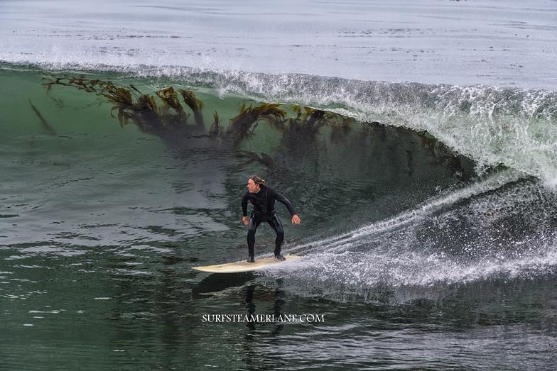 Kelp surfing, Steamer Lane-The Point