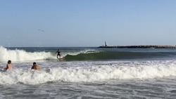 Surfing waves for beginners, Meia Praia photo