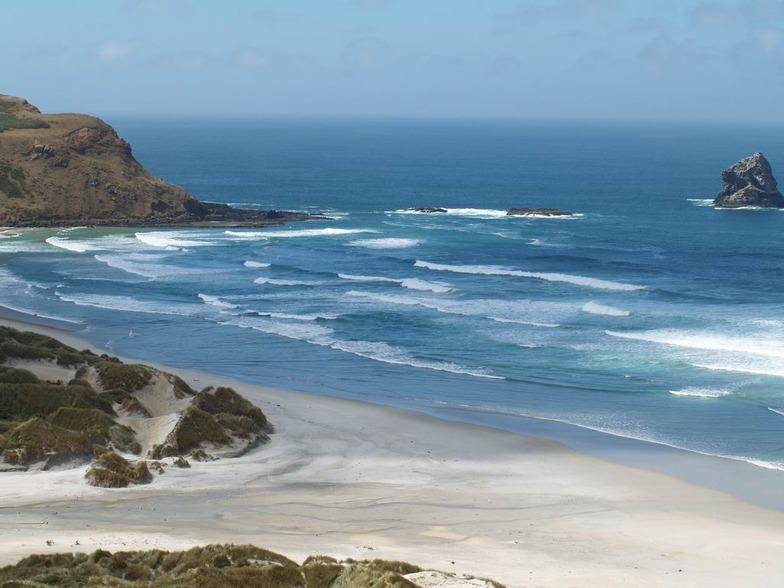 Otago Peninsula - Sandfly Bay break guide