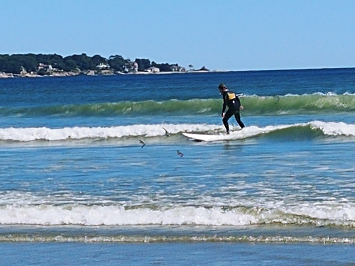 Having fun, Nahant Beach