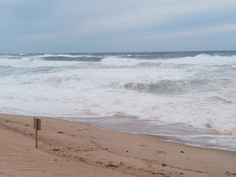 Newcombs Hollow surf break