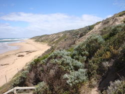Back Beach, Point Lonsdale photo