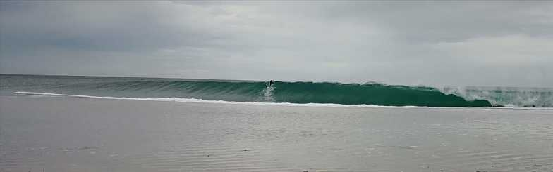 cyclone swell., Singleton