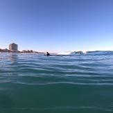Scarborough paradise, Scarborough Beach