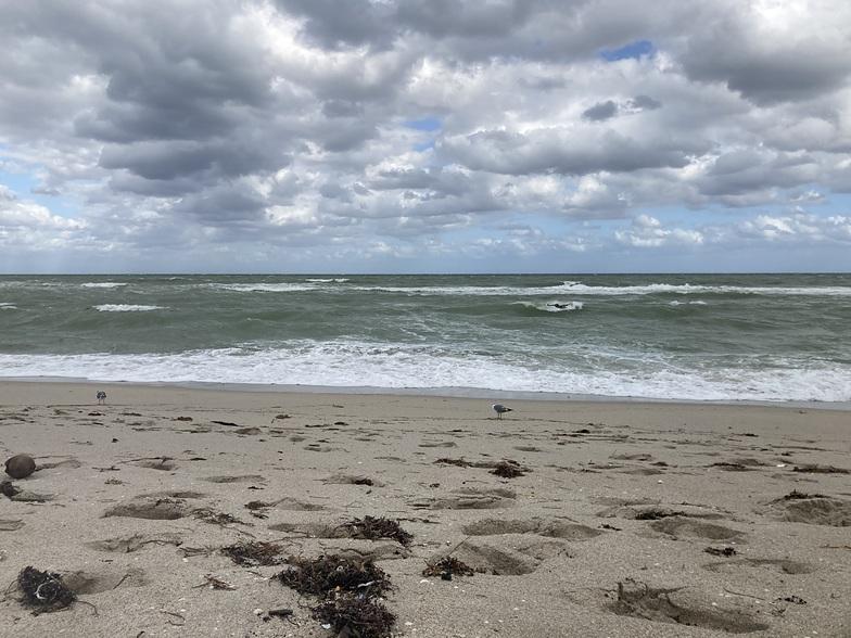 Haulover surf break